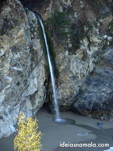 Pfeiffer Burns State Park - Big Sur