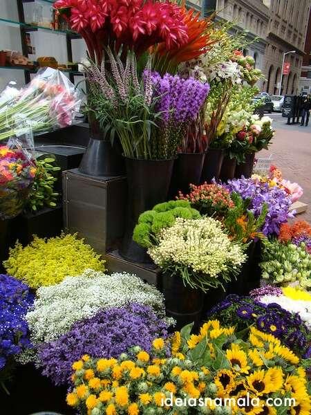 Floricultura fofa - San Francisco