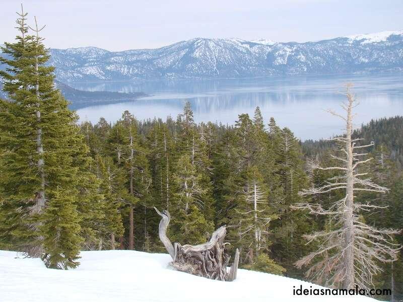 Vista do passeio de Snowmobile em Tahoe
