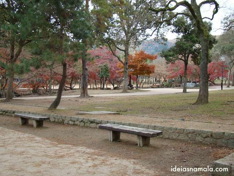 Parque de Nara no outono