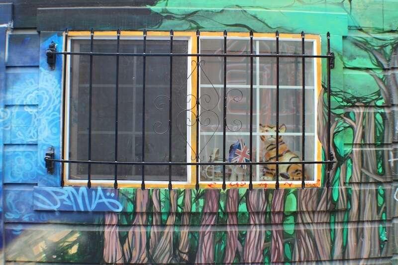 janela no Clarion Alley - Mission district