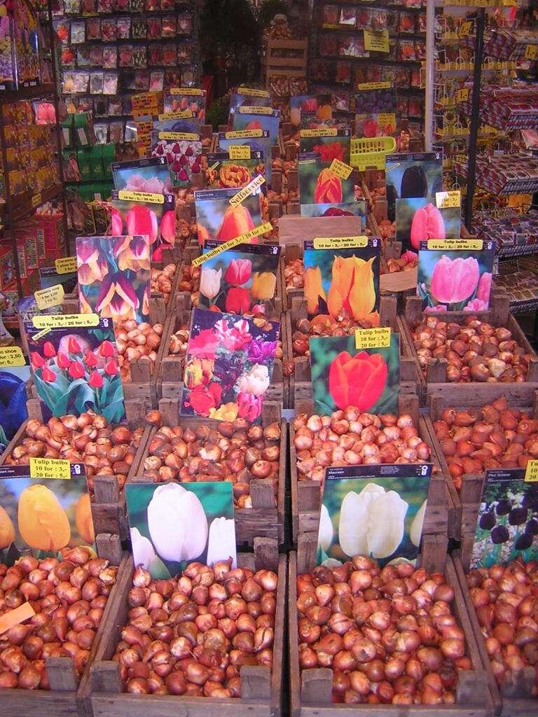 mercado de flores flutuante, o Bloemenmarkt