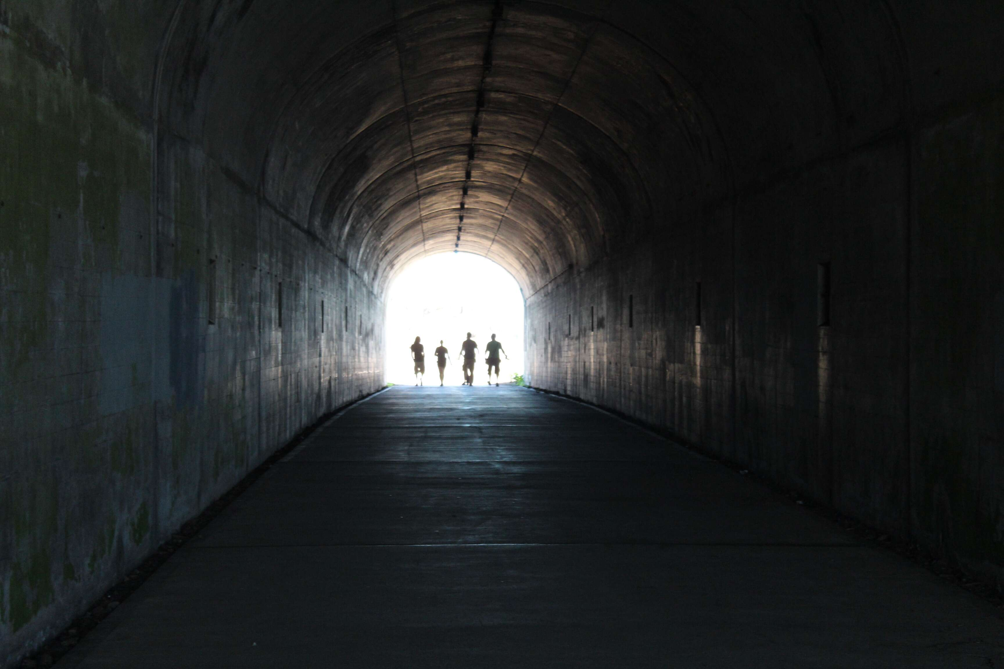 O túnel que te leva ao quarto mirante - Hawk Hill