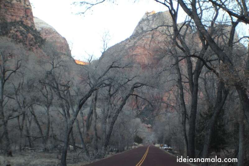 Dentro do Zion National Park
