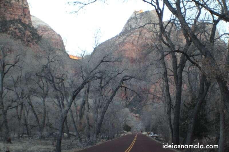 Dentro do Zion National Park