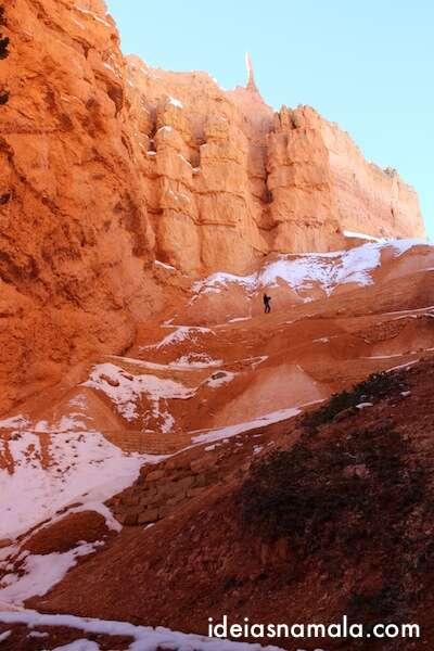 Subida Navajo Trail