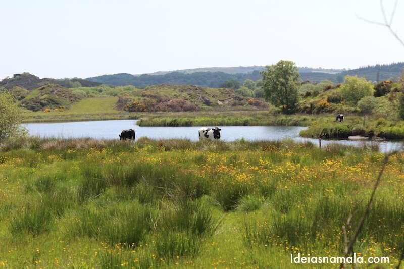 Lago na Irlanda