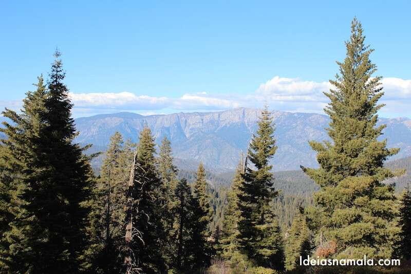 Redwood Mountain Overlook