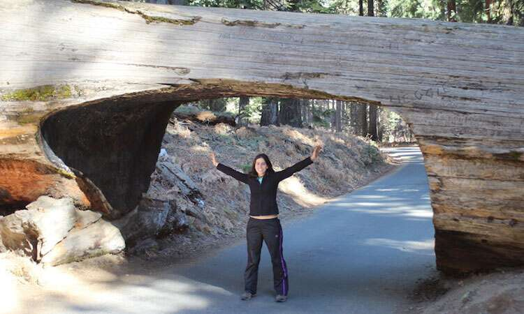 Yosemite Park ou Sequoias National Park