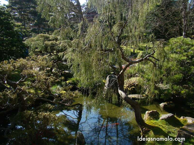 Lago das Carpas - Japanese Tea Garden