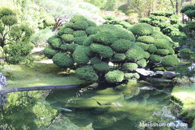 Arvores - Japanese Tea Garden