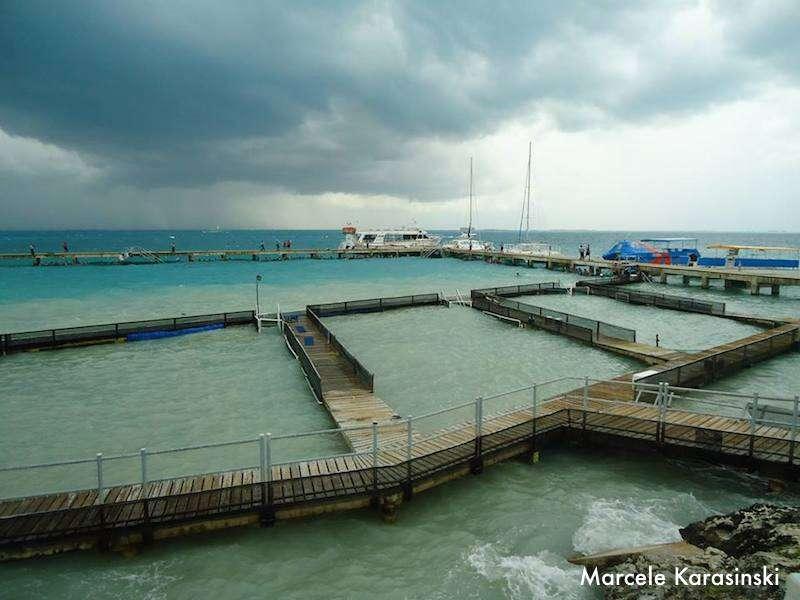Piscina dos golfinhos - Isla Mujeres
