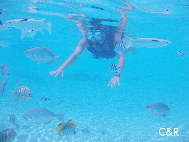 Snorkel no Tahiti - Bora Bora