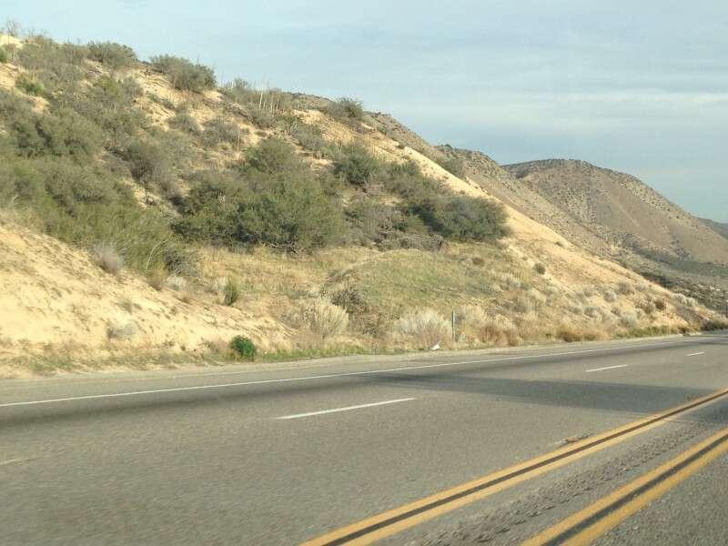 O deserto da Califórnia