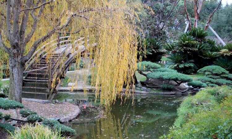 Jardim Japonês - Huntigton Gardens