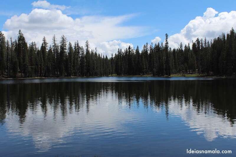 O reflexo e as arvores nesse lago me lembram ondas de som.