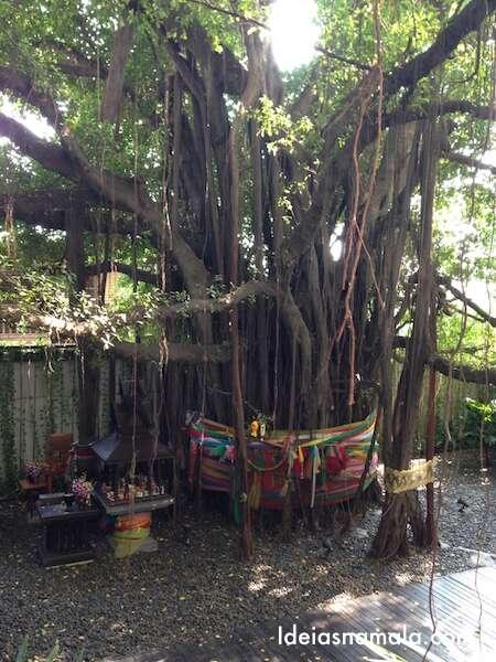 Árvore linda no Hilton de Bangkok