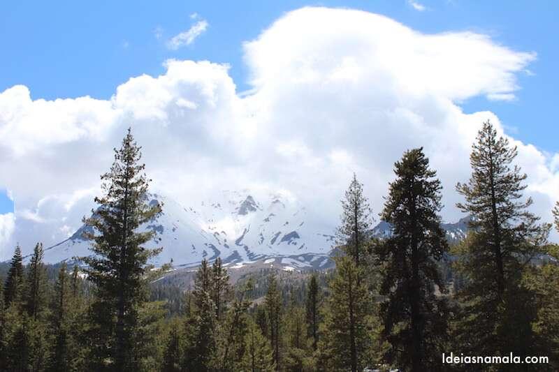 Mt. Lassen - Devasted Area