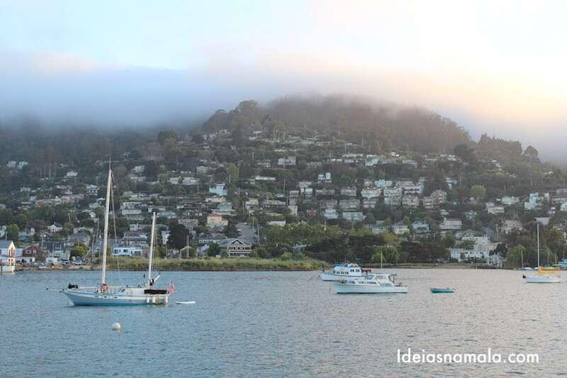 Tiburon - Califórnia