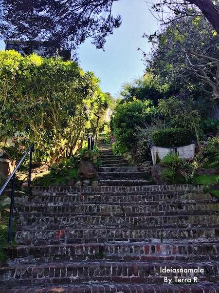 Urban Hikes San FRancisco