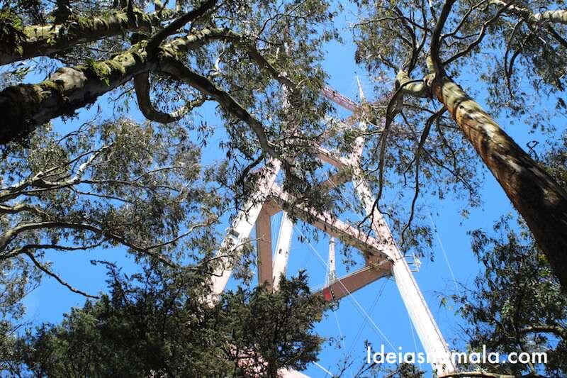 Sutra Tower vista de dentro da floresta de Eucaliptos