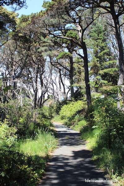 Jardim Botânico de Mendocino - Califórnia
