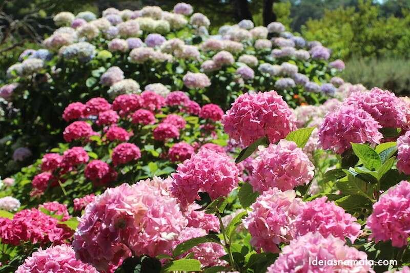 Jardins Filoli - California