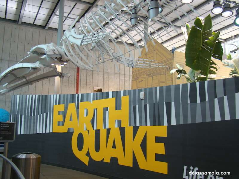Earthquake - California Academy of Science