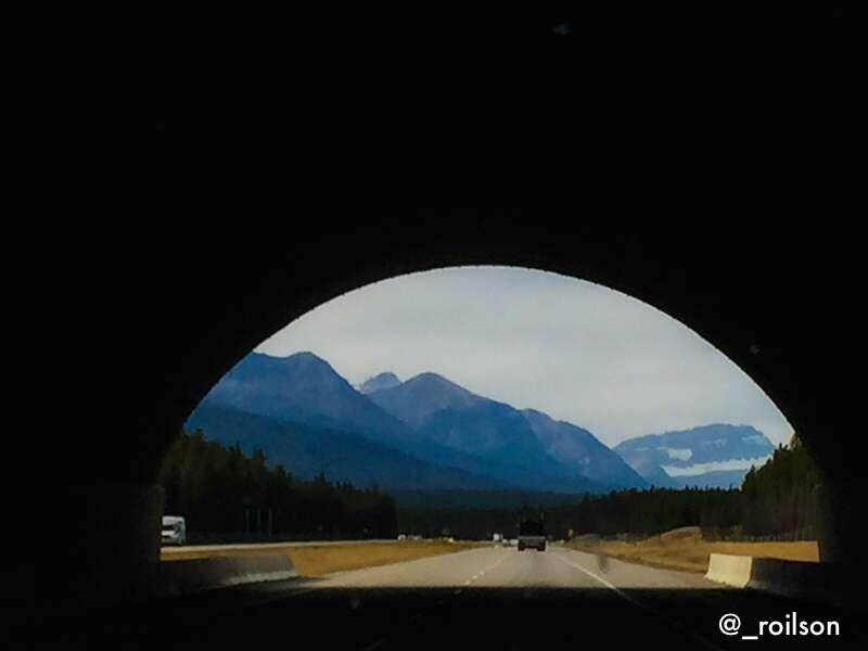 Ponte para os animais cruzarem - Banff