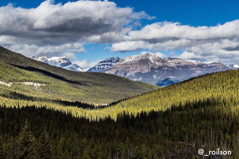 Parte da trás da trilha do Lago Moraine - Banff