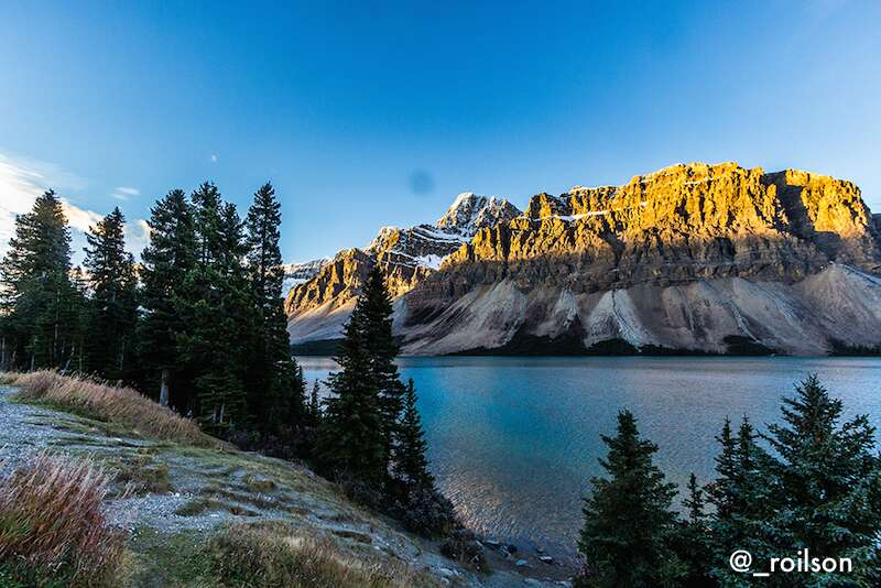 Bow lake - Icefield Parkway