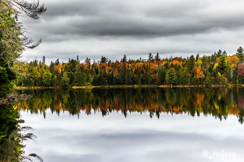 Cores do Outono no Algonquin