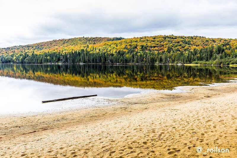 Algonquin Park - Ontario