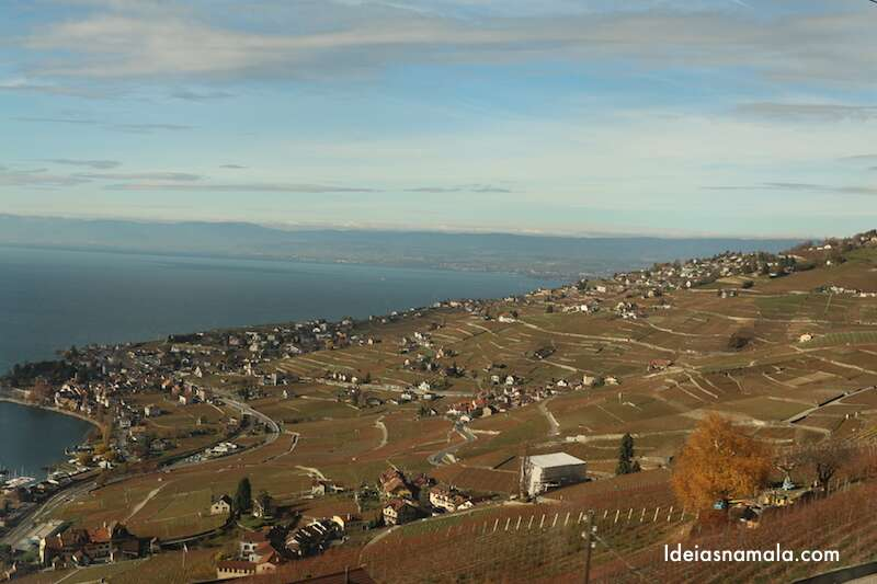 Vinhas em Lavaux - Suíça