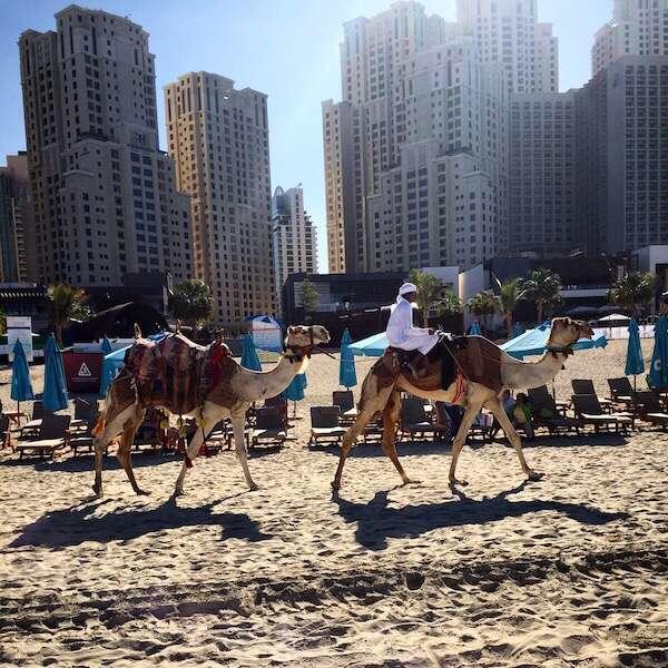 Roteiro de 5 dias em Dubai