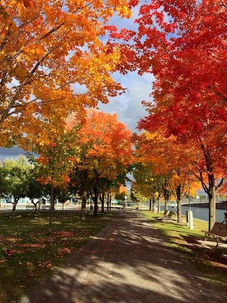 Montreal - Canadá