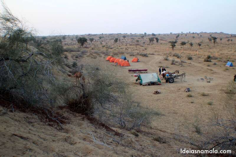 Safari de camelos em Bikaner