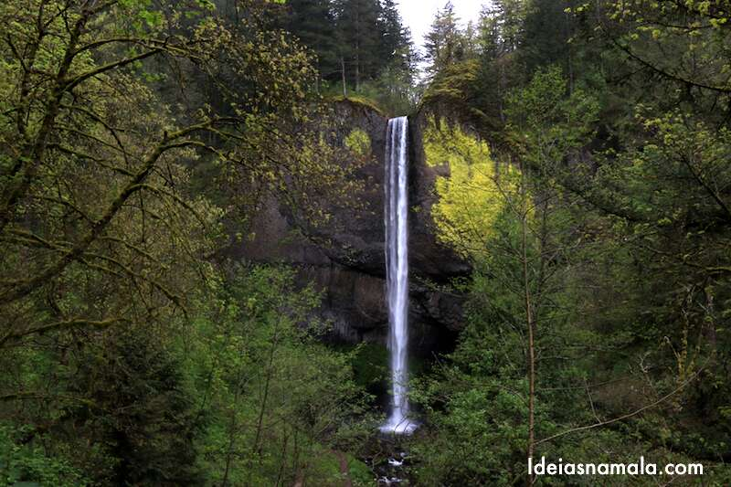 Multonamah Falls & Columbia River Gorge