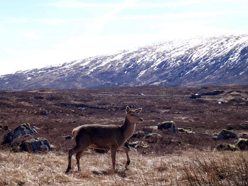 Highlands e Ilha de Skye