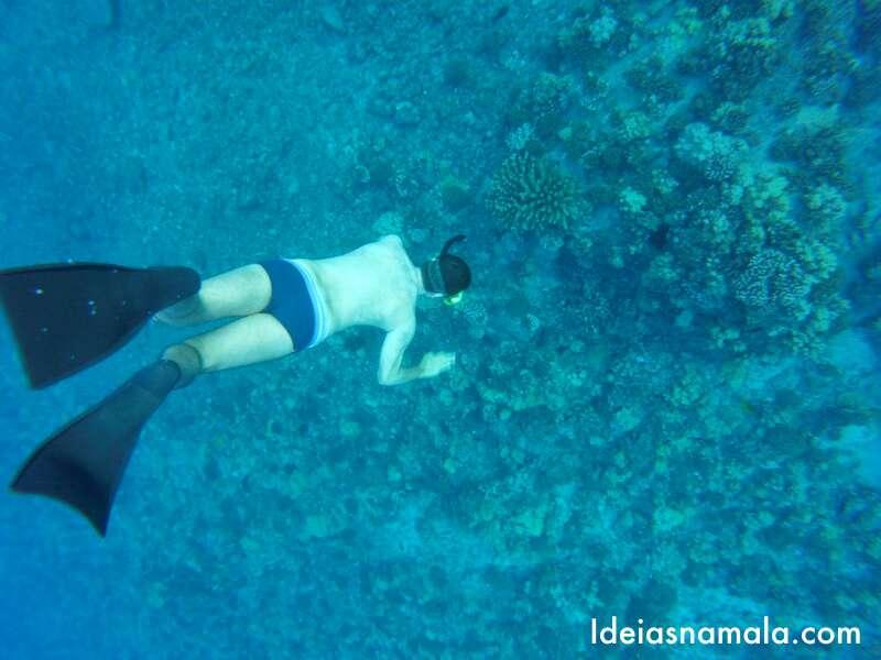 Snorkel em Maui