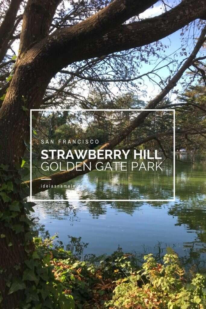 Strawberry Hil