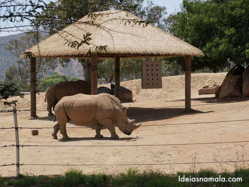Zoo Safari Park