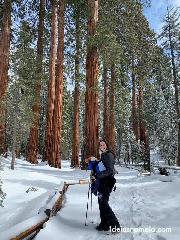 Mariposa Grove no inverno - a visita é feita com sapatos de neve