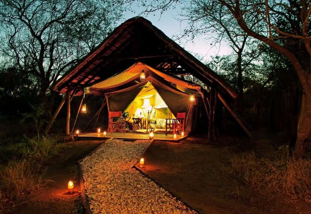 reserva de Thornybush
