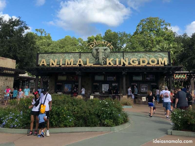 Roteiro Animal Kingdom Orlando