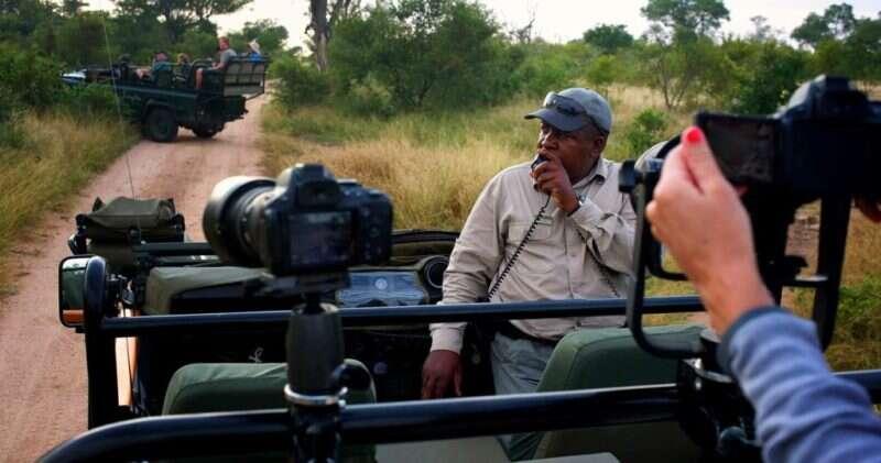 safari opcoes africa do sul