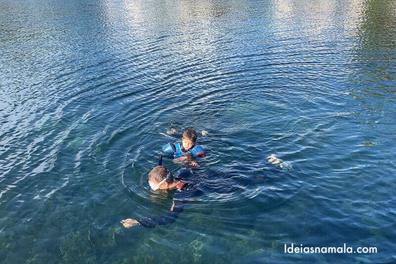 Nadar com peixe boi