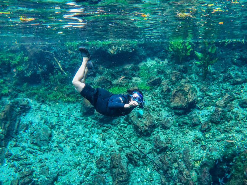 Flutuação na nascente Azul é uma das dicas da lista com o que fazer em Bonito