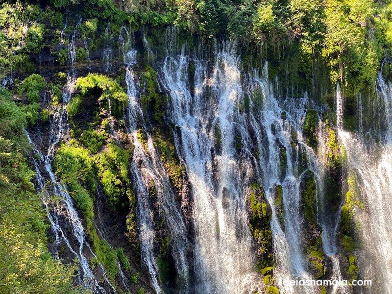 Pequenas quedas da Burney Falls no norte da Califórnia