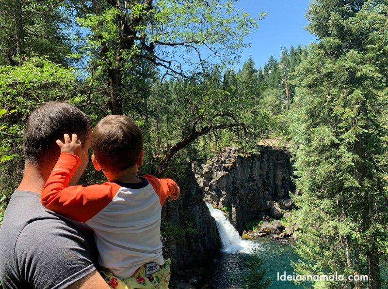 Upper Mc Cloud Falls ena região deShasta